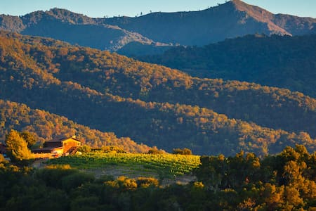 Vineyard Cottage with Stunning View - Carmel Valley