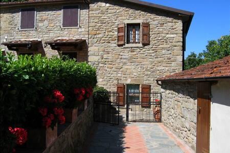 Casa Ciabatti, sleeps 4 guests in Castel Focognano - Castel Focognano - Villa