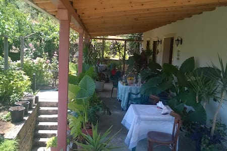 Erindi Guesthouse & Garden Terrace - Gjirokaster - House