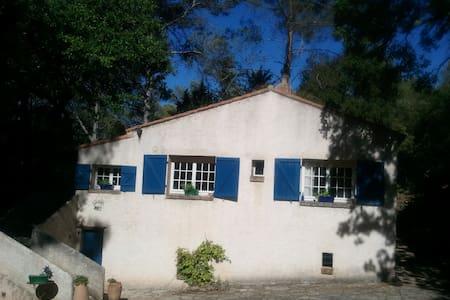 Maison campagne milieu des bois - House