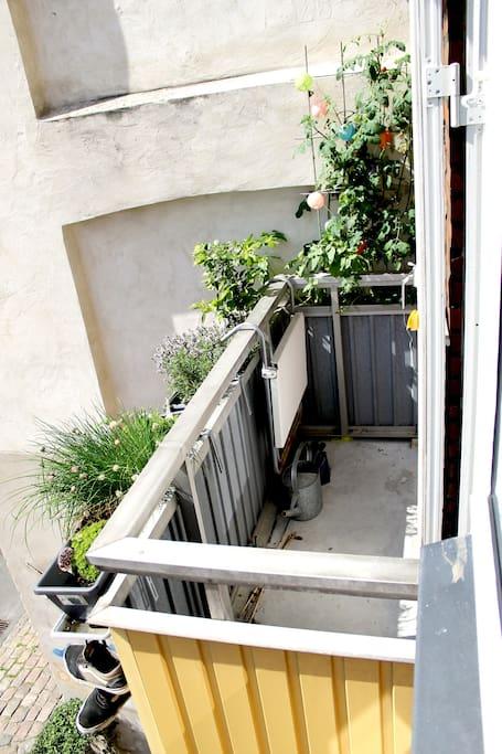 Sunniest balcony in town.