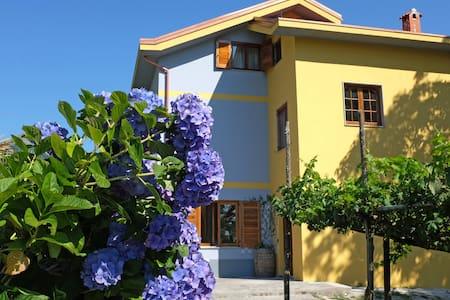 B&B Villa Elisa Agerola - Agerola - Bed & Breakfast