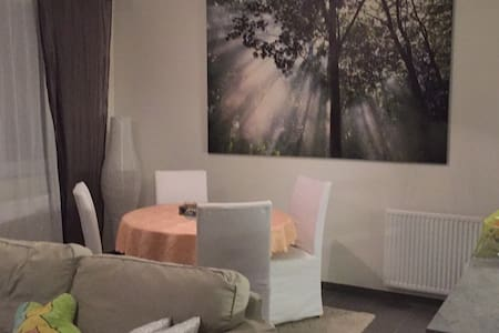 room renting for 1 or 2 persons - Molenbeek-Saint-Jean - Apartment