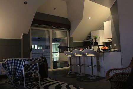 Chambre de 20 m2 avec sdd privative - Apartamento