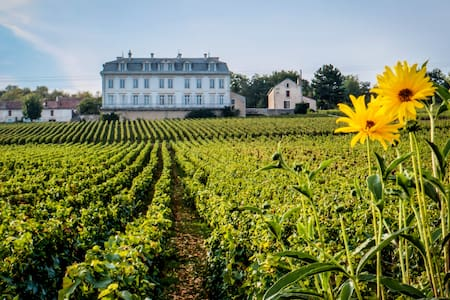 65m2 aptmt Vineyard View in Château - Appartamento