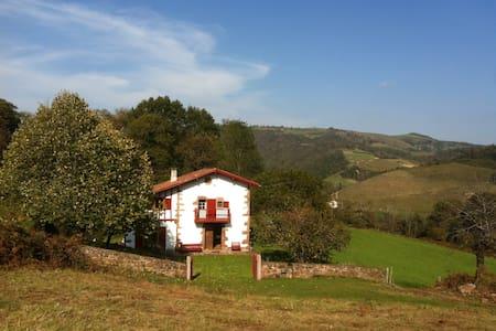 Ancienne bergerie restaurée - Ascarat - Villa
