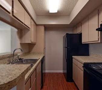 Texas Medical Center 2 bedroom Fully Furnished - Houston