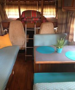 Camping-car en forêt Linxe - Vielle-Saint-Girons - Linxe - Husbil/husvagn