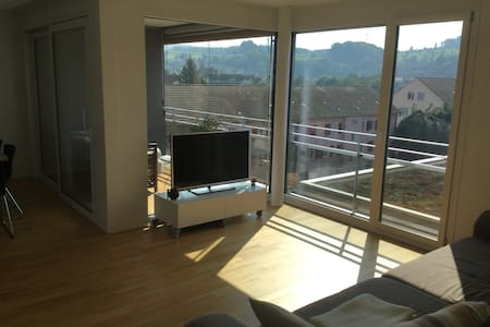 Nice Apartment close to Basel - Daire