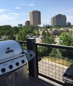 Stunning one bedroom in the DTC - Greenwood Village