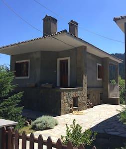 Παραδοσιακό Σπίτι - Pertouli - House