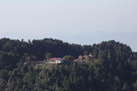 Single Suite Heritage Bungalow - Mussoorie - Bungalow