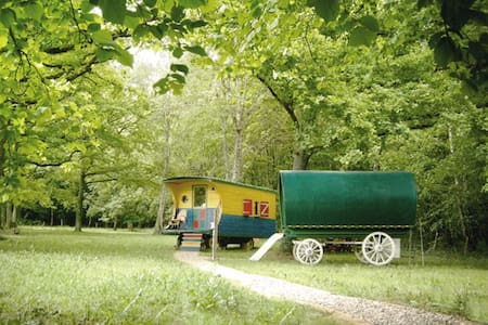 Gypsy trailers in the forest - Other