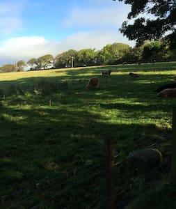 Enjoy our peaceful home - Kilcreggan