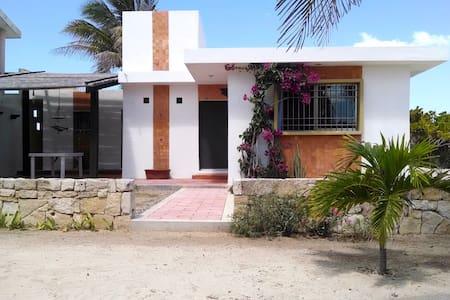 Little home in Sisal's oceanfront. - House