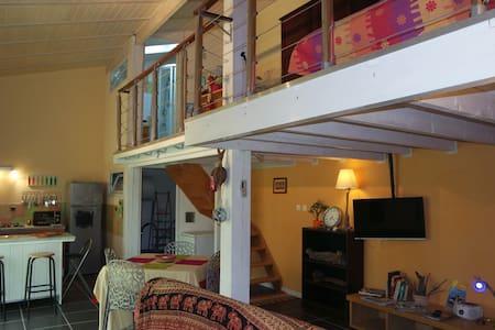 Charmant duplex tout confort sur jardin - Loft
