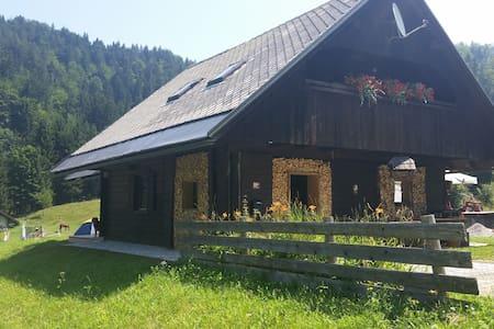 Apartment-Cabin Bled-Pokljuka - Krnica - Leilighet