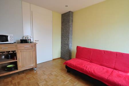 2 Zimmer mit WC + Gartensitzplatz - Hergiswil - Talo