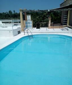 monolocale7 con piscina SALENTO - Vignacastrisi - House