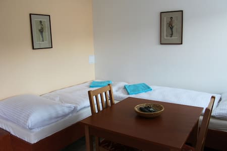 Vila Aneta - double room - Villa