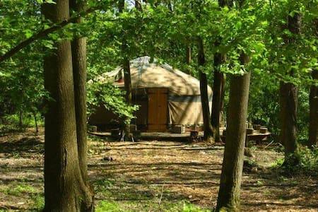 Savannah Yurt