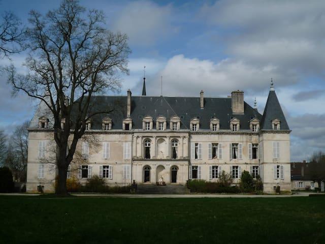 Château d'Arc-en-Barrois - Castle