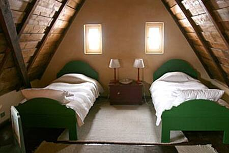 Loft Twin Room in Traditional House - House