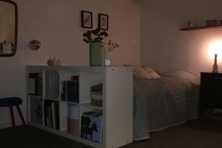 Stor 1 værelses ved Domkirken Århus - Aarhus - Apartment