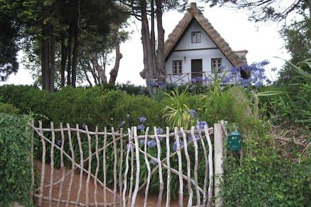 Casa de colmo  típica de Santana - Casa