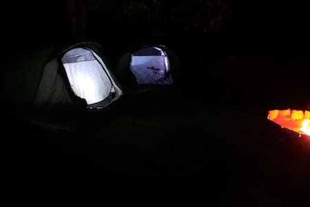 Camping tents and Campfire - Telt