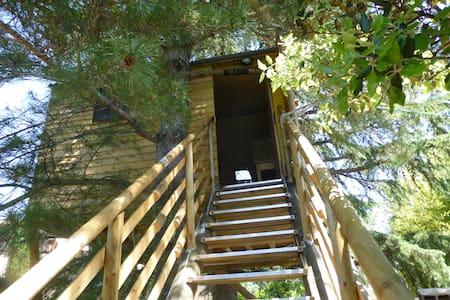Cabane dans les arbres tt confort - Treehouse