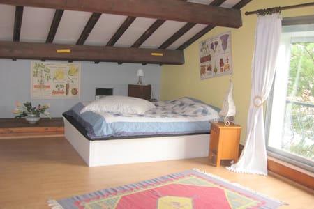 """"""" au n° 13"""" ... dans une grande maison d'artiste - Laroque d'Olmes - Bed & Breakfast"""