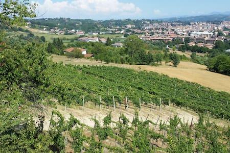 Relax tra i vigneti del Monferrato - Casa
