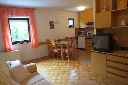 Apartment facing national park - Apartamento