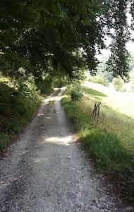 Relax in green of Verona pre-alps - Bosco Chiesanuova - Cabin