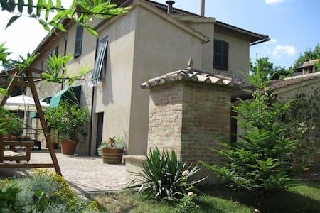 Quiet b & b in Montalcino, Tuscany - Bed & Breakfast