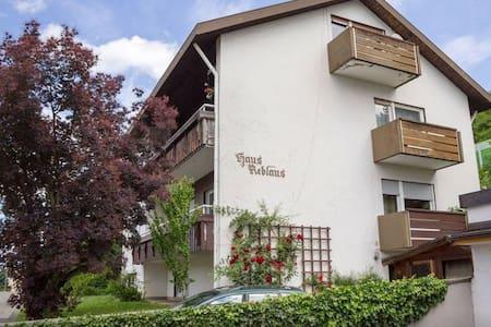 Cozy Apartment near Basel/Freiburg - Bad Bellingen
