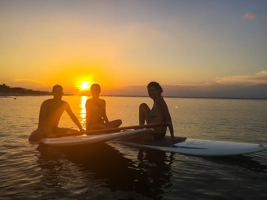Paddling at sunset is almost certain to get you close to the dolphins.