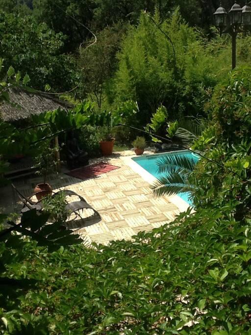 Vue de la piscine du salon et de la cuisine