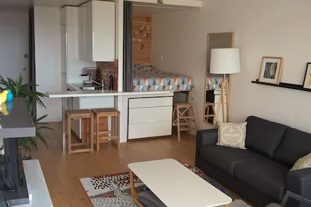 Appartement 31m² - Face mer, refait à neuf! Plage. - Apartment