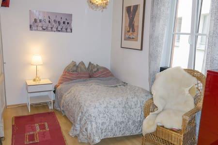 Apartment in the heart of munich! - Munich - Appartement