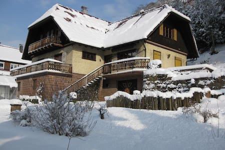 Wunderschönes Schwarzwaldhaus - Ottenhöfen im Schwarzwald