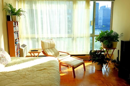 Sunny, spacious, private fully furnished room with own refrigerator, microwafe, coffee/tea machine in a modern apartment on Roosevelt Island, a peaceful neighborhood with an amazing view of Manhattan.  Cable TV and WIFI provided.