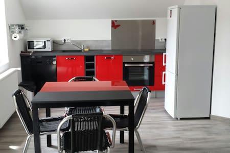 Grand gîte F3 entre Colmar et Eguisheim - Apartment