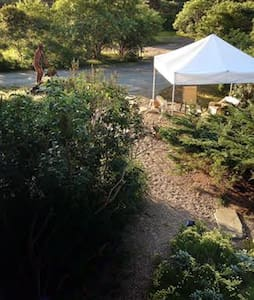 Secluded Oasis near Beaches  Rm. 1 - Nantucket - Maison