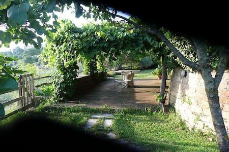 Maremma hills (Tuscany) - Rumah