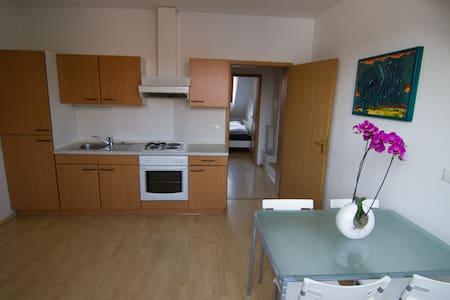 Kamnik Alps Apartment - Apartamento