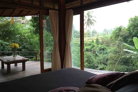 Charming Valley views set in Jungle