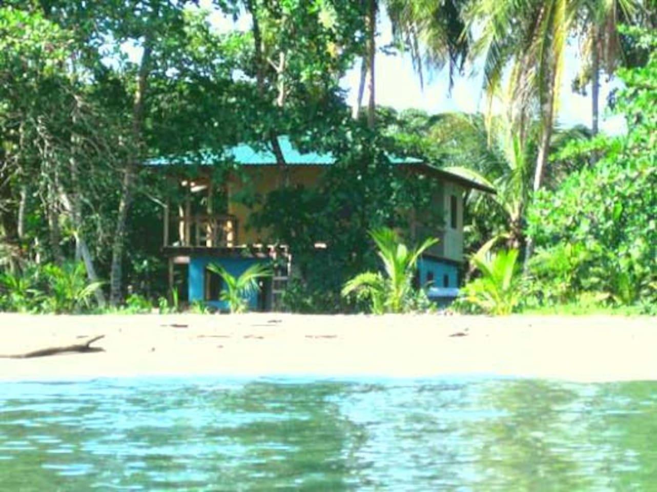 Casa Galim - Blue Morpho House