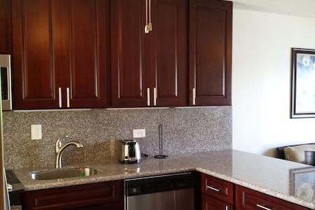 Gorgeous remodeled ocean fron condo - Condominium